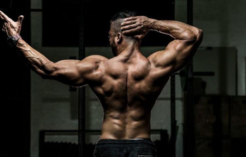 How to pump up your back : read this tutorial